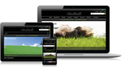 Responsive Design Black Stuff Ecomm Plus