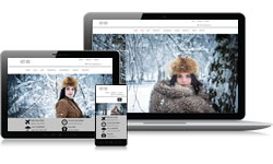 Responsive Design Ice Ecomm Plus