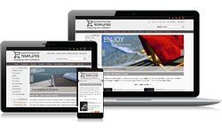 Responsive Design Monochrome Ecomm Plus