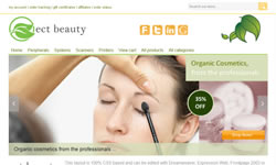CSS Virtual Beauty Online Store